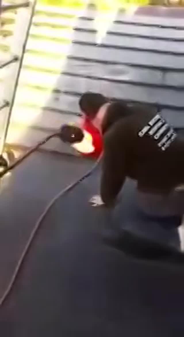Vidéo Yoda