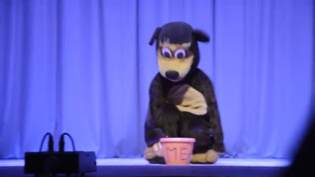 Vidéo Dance Du Pingouin