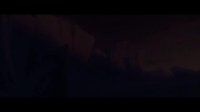Vidéo Un Chat Joueur