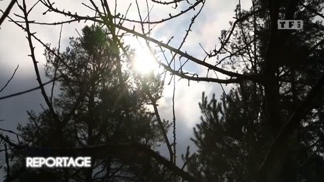 Vidéo La Koenigsegg Agera Rs Atteint Les 457 Kmh Sur Route Du Nevada