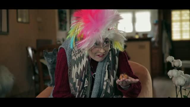 Vidéo Toujours Libre, La Story De Florent Pagny