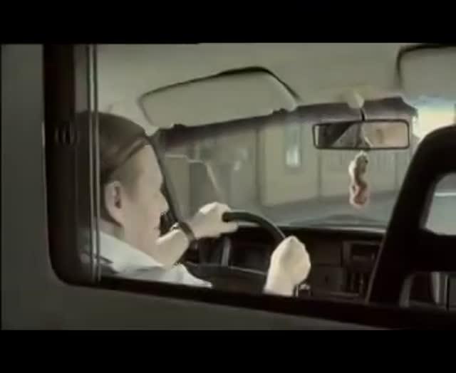 Vidéo Bain Forcé Pour Un Chat